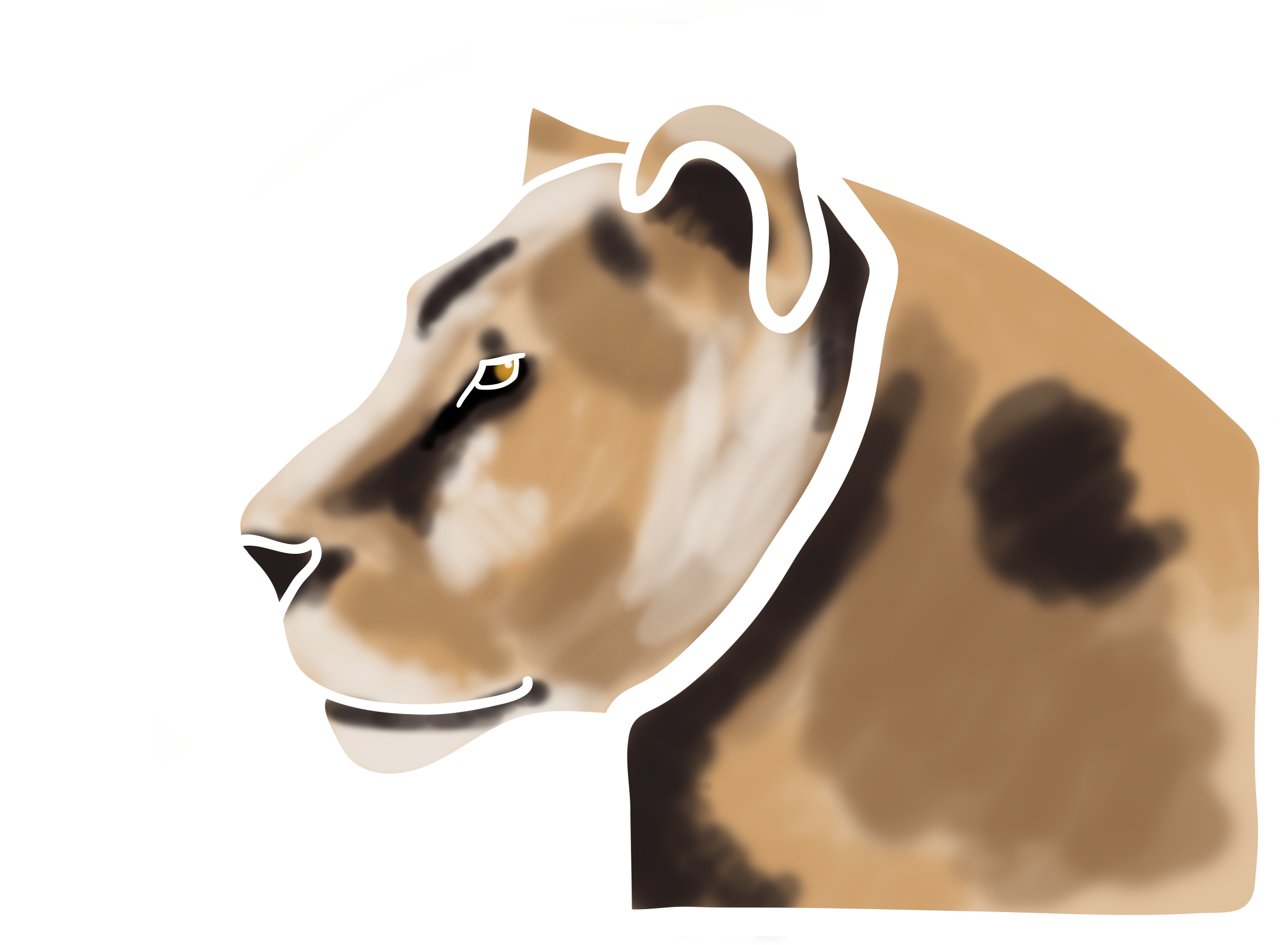 Lioness Png