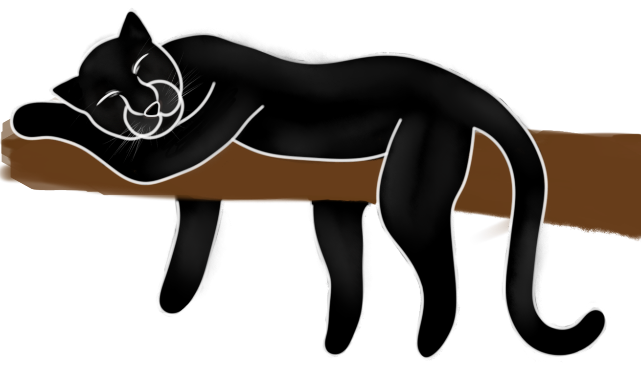 Panther_Sleeping_Concept