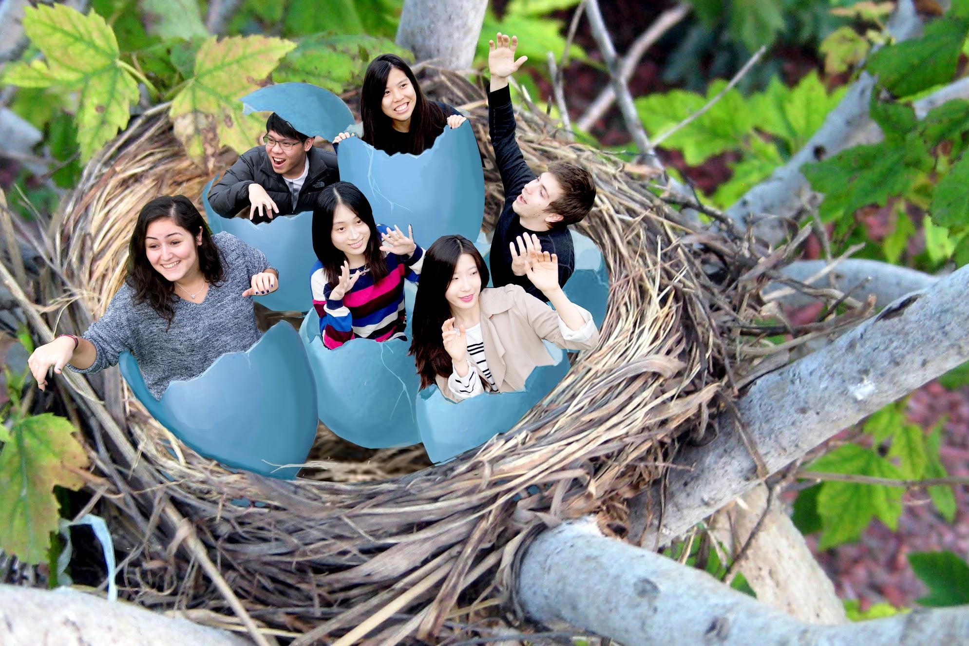 Thunder Egg Team Photo